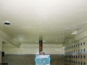 右岸流域処理場1-2号水処理施設最初沈殿池ほか防食