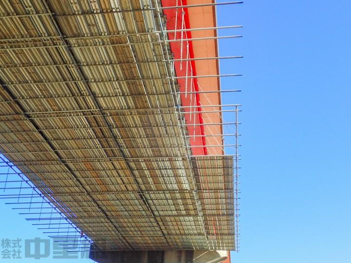 H27秋ヶ瀬橋の写真